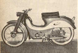 Radexi Super Rollermoped